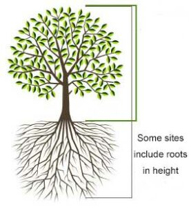 Height includes roots