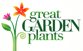 Great Garden Plants