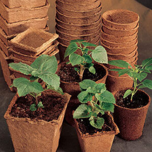 biodegradable fiber pots