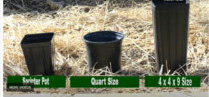 Nature Hills container sizes