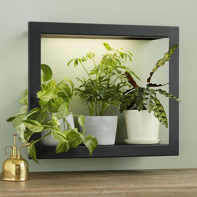 Grow Light Frame Shelf