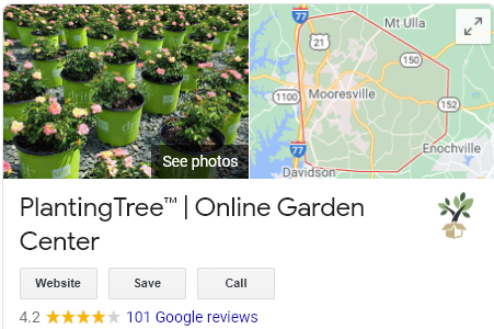planting tree google reviews